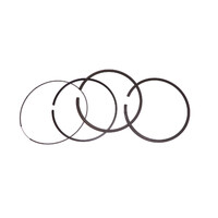 LAWN MOWER RING SET FIT SELECT 10A SERIES GENUINE BRIGGS AND STRATTON 699658
