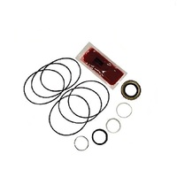 PARKER HYDROSTATIC WHEEL MOTOR SEAL KIT FITS SELECTED STAG TORO RIDE ON MOWERS   000092