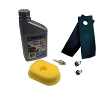 MASPORT & MORRISION LAWNMOWER FLAT BLADES & SERVICE KIT 3.5 - 4HP BRIGGS AND STRATTION 272235S