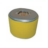 AIR FILTER FOR HONDA GX240 ,GX270 , GX340 , GX390 MOTORS