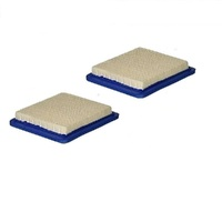 2 X AIR FILTER FITS SELECTED  BRIGGS & STRATTON QUANTUM MOTORS & HONDA MOTORS